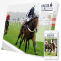 Fivepilchard - Excel Horse Racing