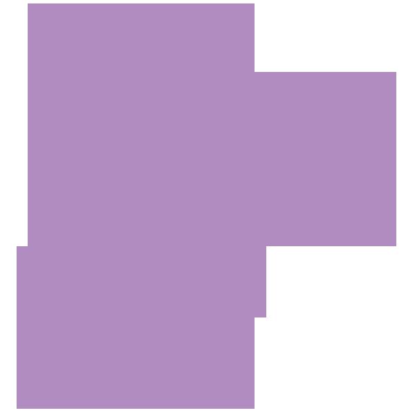FP Logo 2